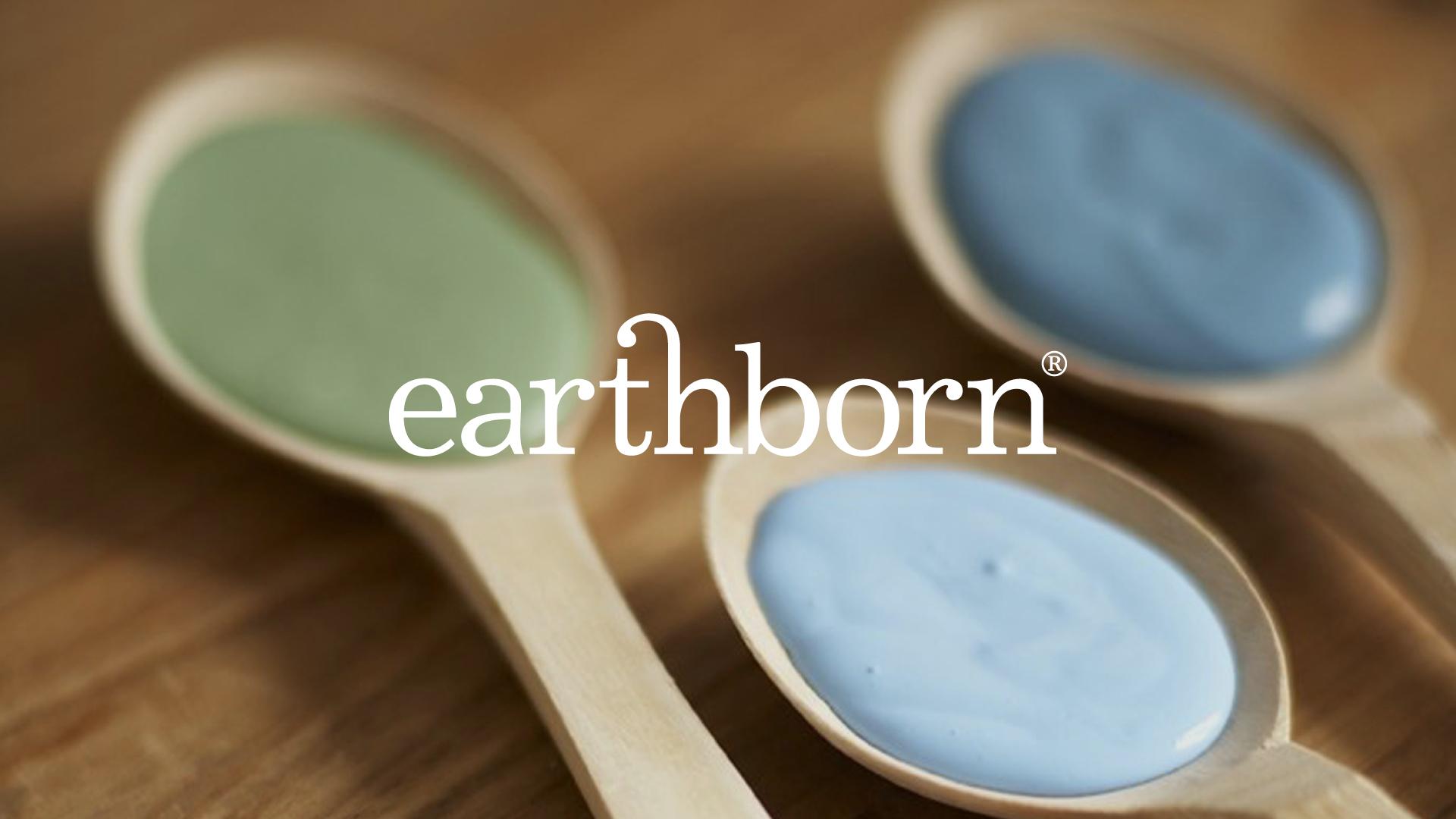Eco Paint Company Brand Identity